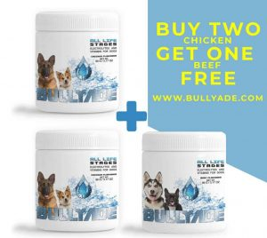 vitamin supplement for dogs